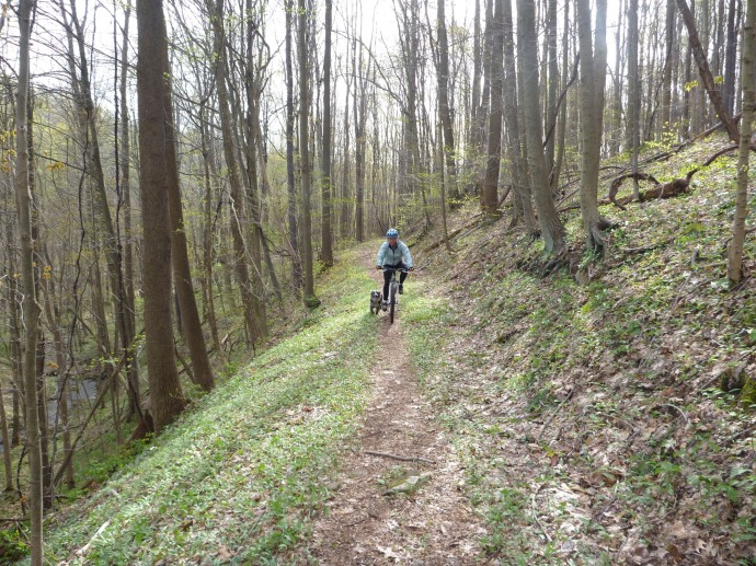 Mountain Biking in Ohiopyle, PA