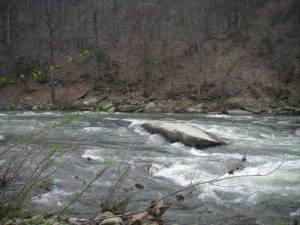 great kayak learning river