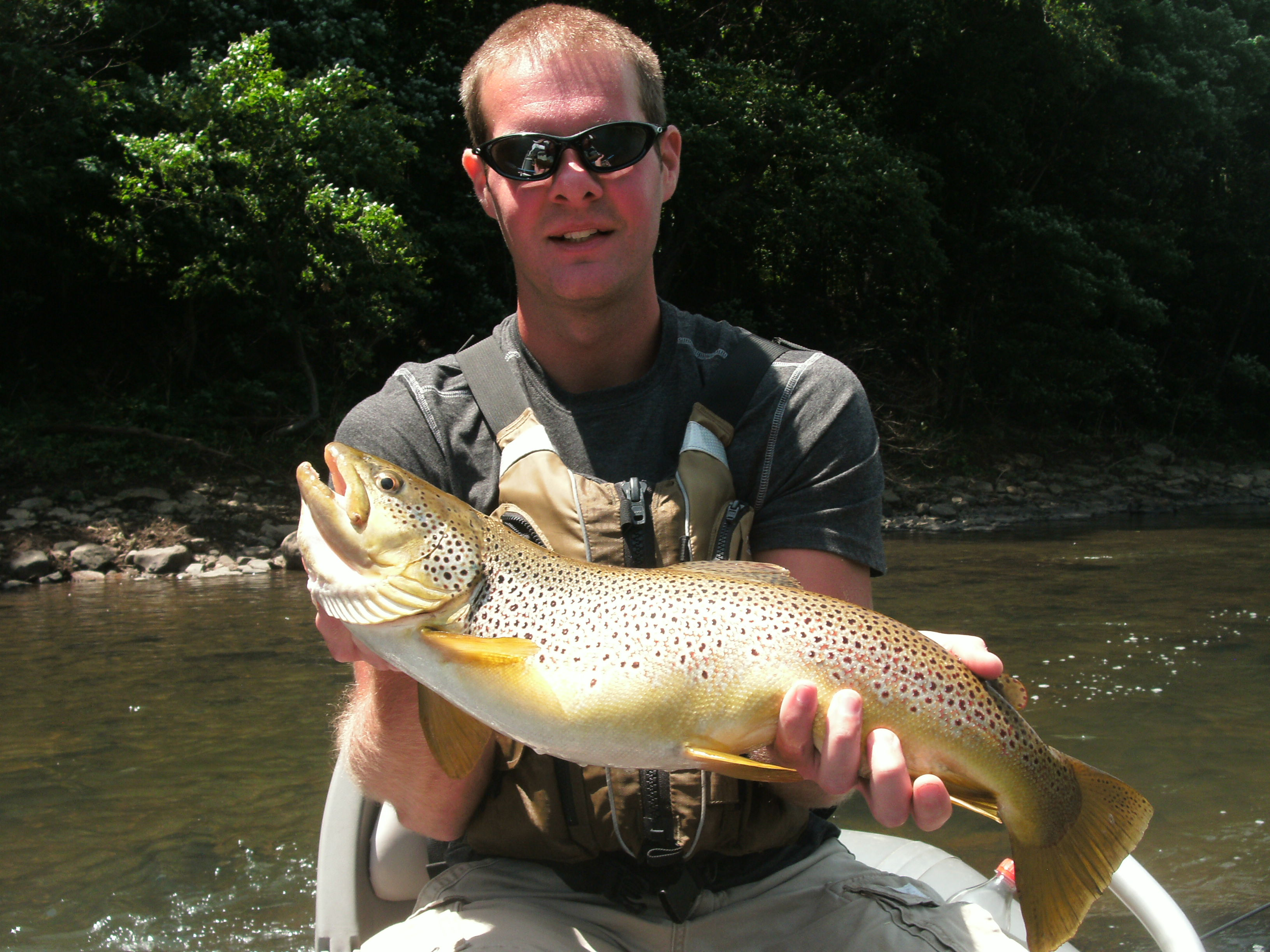 Fly fishing in ohiopyle rivers roads for Youghiogheny river fishing