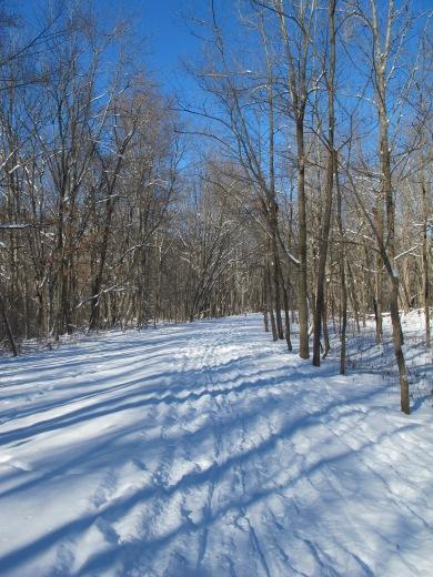 Ohiopyle trails Wilderness Voyageurs